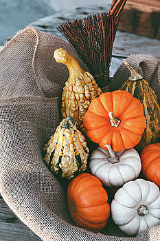 Colorful Decorative Pumpkins by Evgeniya Lystsova