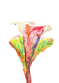 Colorful Flower by Creatives Think