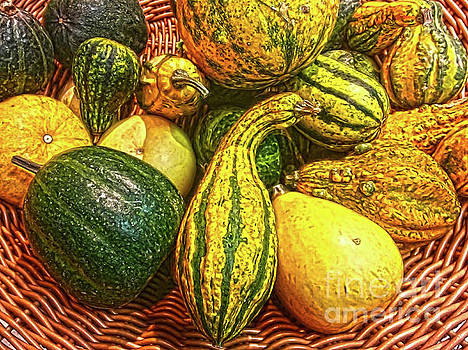 Colorful Harvest by Jasna Dragun