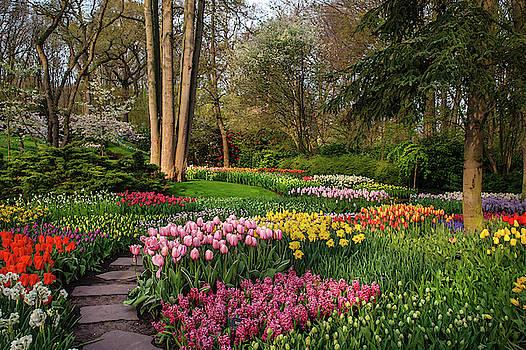 Jenny Rainbow - Colorful World of Keukenhof. Flower Power 1