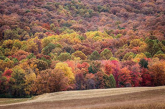 Colors of Gettysburg by Travis Rogers