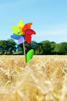 Colourful Windmill in a field of Corn ii by Helen Northcott