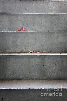 Concrete stairs with leaves by Jan Brons