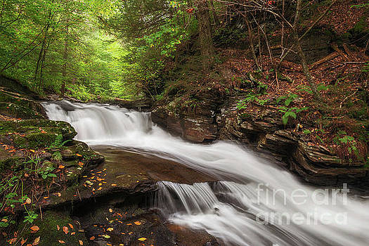 Conestoga Falls by Sharon Seaward