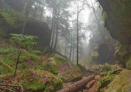 Conkle's Hollow, Hocking Hills, OH by Ina Kratzsch