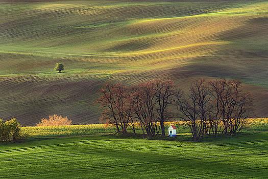 Contemplation in the fields by Marek Ondracek