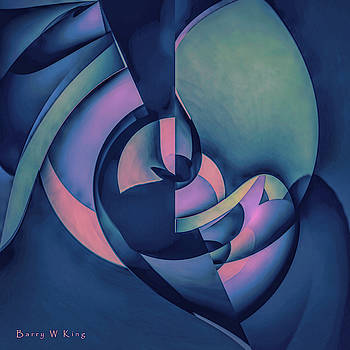 Contemplative by Barry W King
