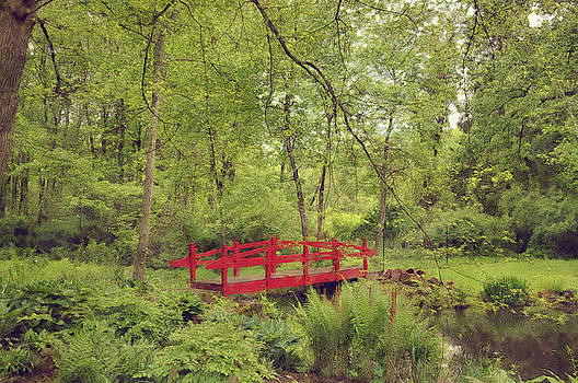 Contemplative Bridge by Andrea Swiedler