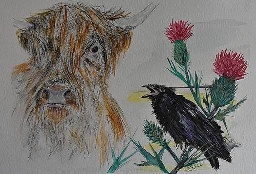 Coo by Susan Voidets