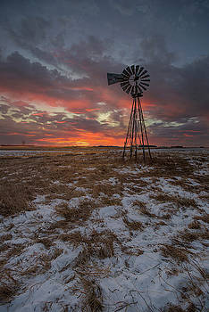 Cool Breeze  by Aaron J Groen