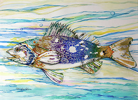Cool Fish by Patricia Allingham Carlson