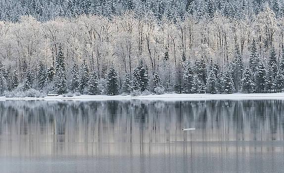 Cool Reflections by Joy McAdams