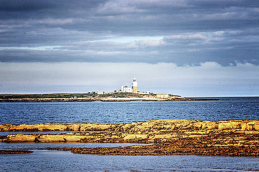 Coquet Island by Jeff Townsend