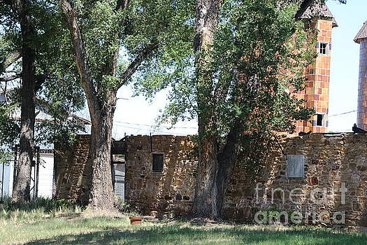 Coral at Fort Stanton New Mexico by Colleen Cornelius