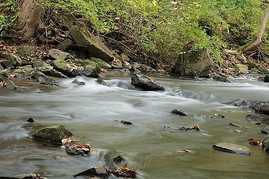 Corbetts Falls lazy stream by Gerald Salamone