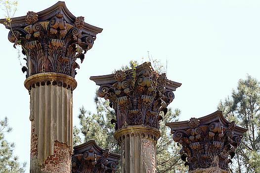 Corinthian Column Capitals at Windsor Ruins by Susan Rissi Tregoning