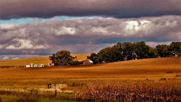 Cornfields and Farms by Peggy Leyva Conley