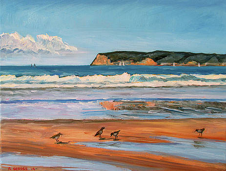 Coronado Beach Calm Day by Robert Gerdes
