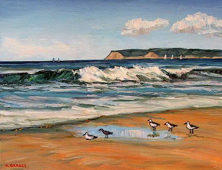 Coronado Beach Surf and Gulls by Robert Gerdes