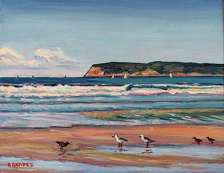 Coronado Beach with Shorebirds by Robert Gerdes