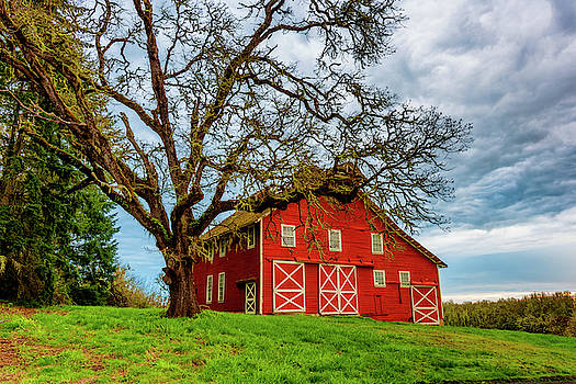 Country Morning by Dee Browning