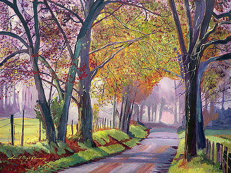 Country Roads  by David Lloyd Glover