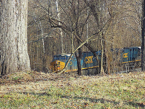 Country Train by Matthew Seufer