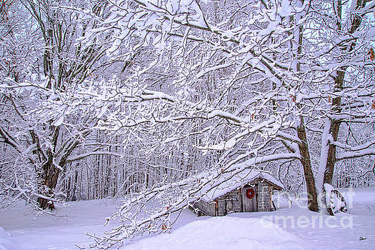 Country Winter by Alana Ranney