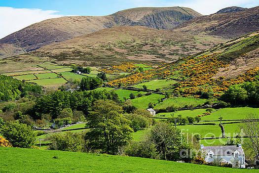 Bob Phillips - County Down Landscape