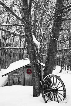 County Winter by Alana Ranney