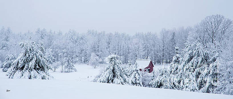 County Winter Scene  by Alana Ranney