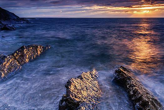 David Ross - Crackington Haven beach, Cornwall
