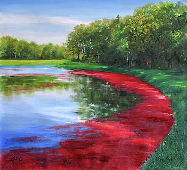 Cranberry Bog by Jonathan Guy-Gladding JAG