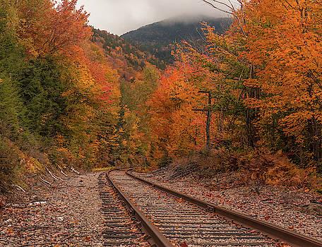 Crawford Notch Scenic Railway Autumn by Dan Sproul