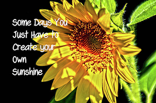 Create Your Sunshine by Annette Persinger