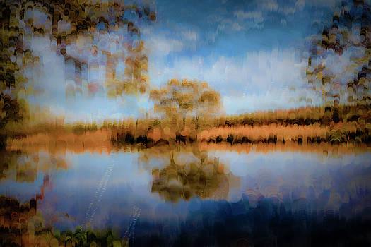 Creek reflection #i1 by Leif Sohlman