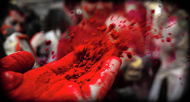 Crimson by Traci Asaurus
