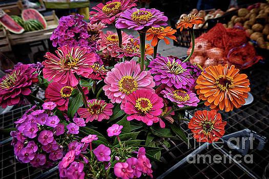 Croatian Market Flowers by Norman Gabitzsch