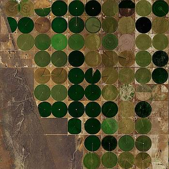 Crop Circles in Northern Eureka of Nevada by Planet Impression