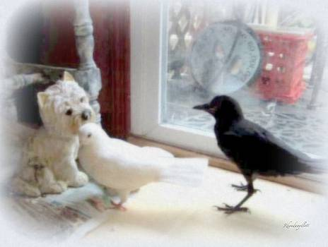 Crow and Pigeon by Rhonda Aydlett