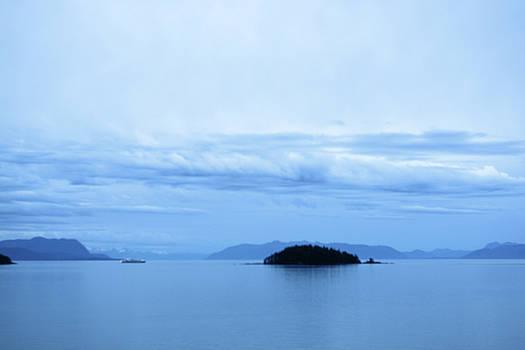Cruising Alaska in the Blue Hour by Connie Fox