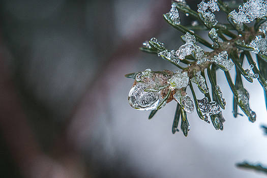 Crystal Green by Tim Beebe
