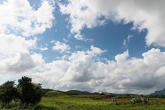 Cuban landscape by Yuri San