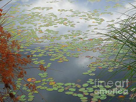 Cullaby Lake Oregon Coast by Art Sandi