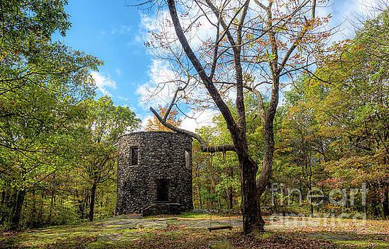 Cunningham Tower by Linda Troski