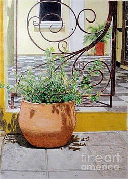 Curacao Courtyard by Glenda Zuckerman