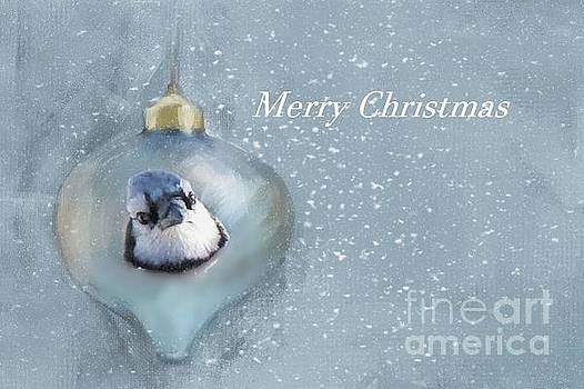 Curious Bluejay by Janette Boyd
