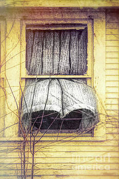 Curtain Blowing Open Window by Jill Battaglia