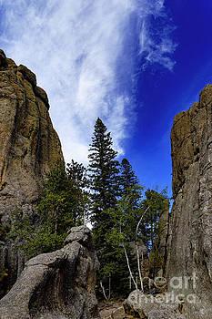 Custer St. Park Trail by Carol Bilodeau