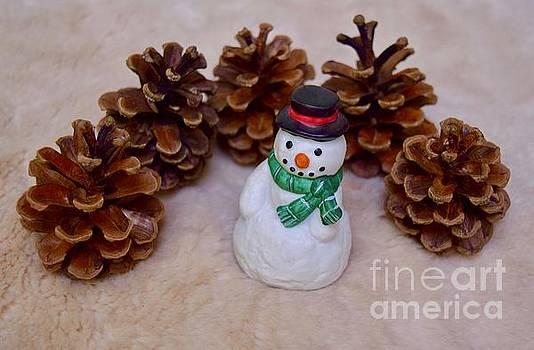Cute snowman by Inessa Williams